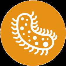 bacteriaIcon